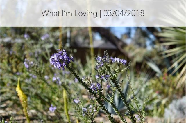 WhatImLoving-3.4.18